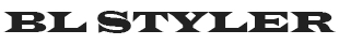 bl_styler_logo